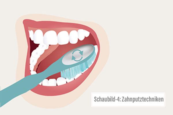 alexamarketing_website-relaunch_zahnputztechniken-4